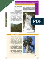 Guia Parques 39-2014