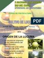 Cultivo de Lucuma