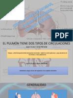 capilar.pptx