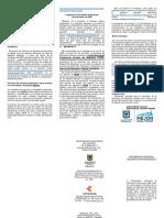 Folleto_Docentes_Provisionales