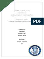 Proyecto de Inversiòn (PSE)-1 NEW[1]