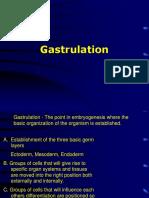 06Gastrulationtxt.ppt