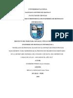 Proyecto de Tesis - Eyner Guerrero Pineda - 100%