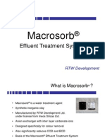 RTW - Macrosorb Profile (Feb 2010)