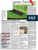 The Organic Farm Dec 2016 - Black Soldier Fly