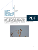 Identificación IMPACTOS AMBIENTALES_unlocked