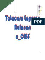 Tatacara Laporan Bulanan E_CIBS FY2011