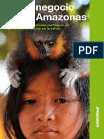 El negocio de las amazonas
