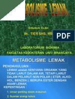 metabolismelemakbs1-121001111236-phpapp02.pdf