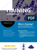 Microbiology-STAINING