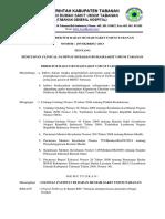 Kupdf.net Sk Clinical Pathwaydoc