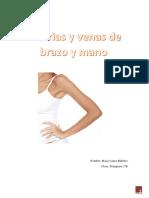 Arterias y venas de brazo y mano.docx