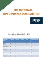 PP Audit Internal