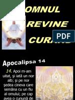 Tema 8 - Domnul revine curând