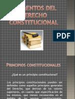 22304691 Elementos Derecho Constitucional