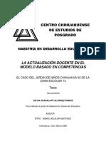 Actalizaion docente en competencias.pdf