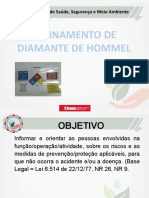 Treinamento Diamante de Hommel.pdf