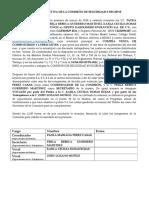 Acta Constitutiva Seguridad e Higiene (1)