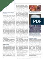 sj.bdj.2011.344.pdf