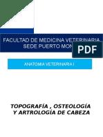 CLASE 2 OSTEOLOGIA Y ARTROLOGÍA DE CRANEO USS (2).pptx