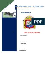 Arquitectura-Andina-Informe-Completo.docx
