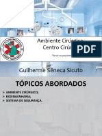 Lct2 Ambientecirrgico Centrocirrgico 140726114800 Phpapp01