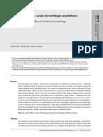 Netto__Vargas_e_Saboya_(2012)_(Buscando)_Os_efeitos_sociais_da_morfologia_arquitetonica-libre.pdf