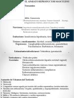 Semiologia Genitourinaria.pptx