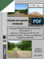 Estudio de Impacto Ambiental ruta 4