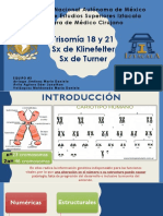 Sindromes 21,18,Klineferter, Turner