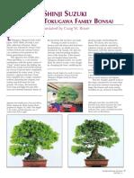 Suzuki Pine Article