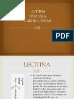 Lecitina, Cefalina, Cardiolipinas