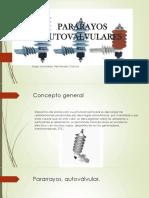 PARARAYOS AUTOVALVULARES.pptx