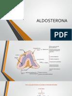 ALDOSTERONA-