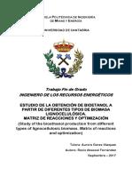 RAF.pdf