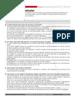 Ficha Ley Postnatal