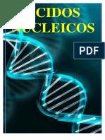 ACIDOS NUCLEICOS 17-18-170910104832.pdf