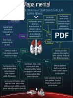 MapamentalFisiologiahistologiaeanatomiadasglndulassuprarenais-1529952758844.pdf