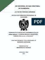 Tesis Ag1137_Rey.pdf