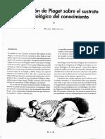 Hugo Aréchiga. Piaget.pdf