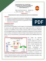 6 Cromatografia de Gases