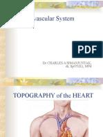 1. Cardiovascular System