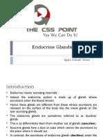 Endocrine Gland System