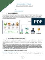 Concepto de Energía de Biomasa