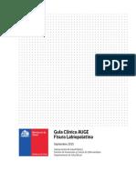 Guia Clinica FLP 2015