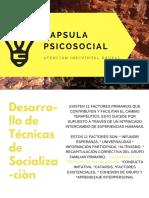 Capsula Psicosocial 2_atencion Individual Grupal