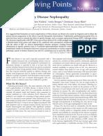 Biomarkers of Fabry Disease Nephropathy, Raphael Schiffmann, Clin J Am Soc Nephrol 5 379–385, 2010
