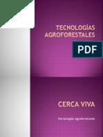 Tecnologias Agroforestales Resumido Para Maestría
