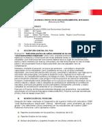 Estructura Peai_modelo Para Completar Ceba Jbs