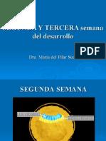 Disco Germinativo Bilaminar y Tri Laminar
